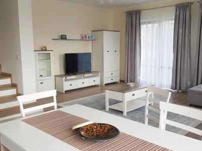 Chirie Casa Lux in Europa mobilat si ulita la chei 200 mp