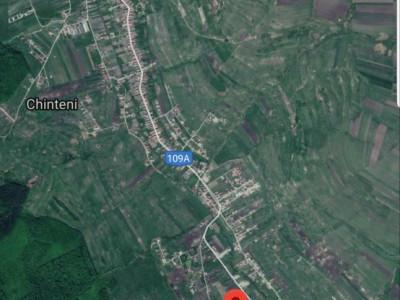 Teren pentru acasa Valea Chintaului, 500mp